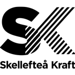 skekraft logo