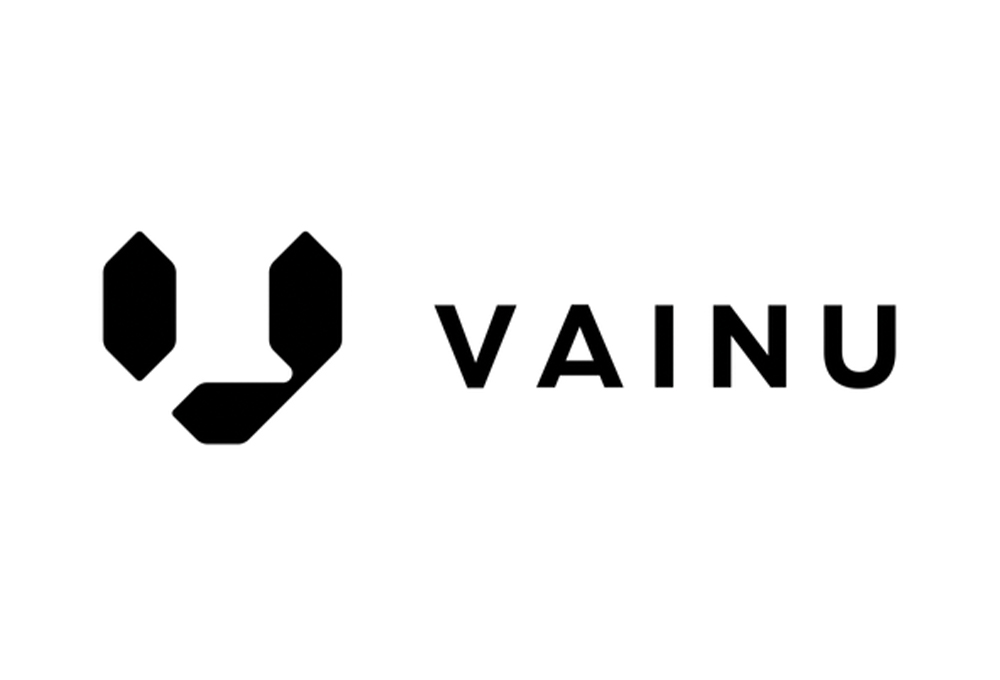 Vainu customer case