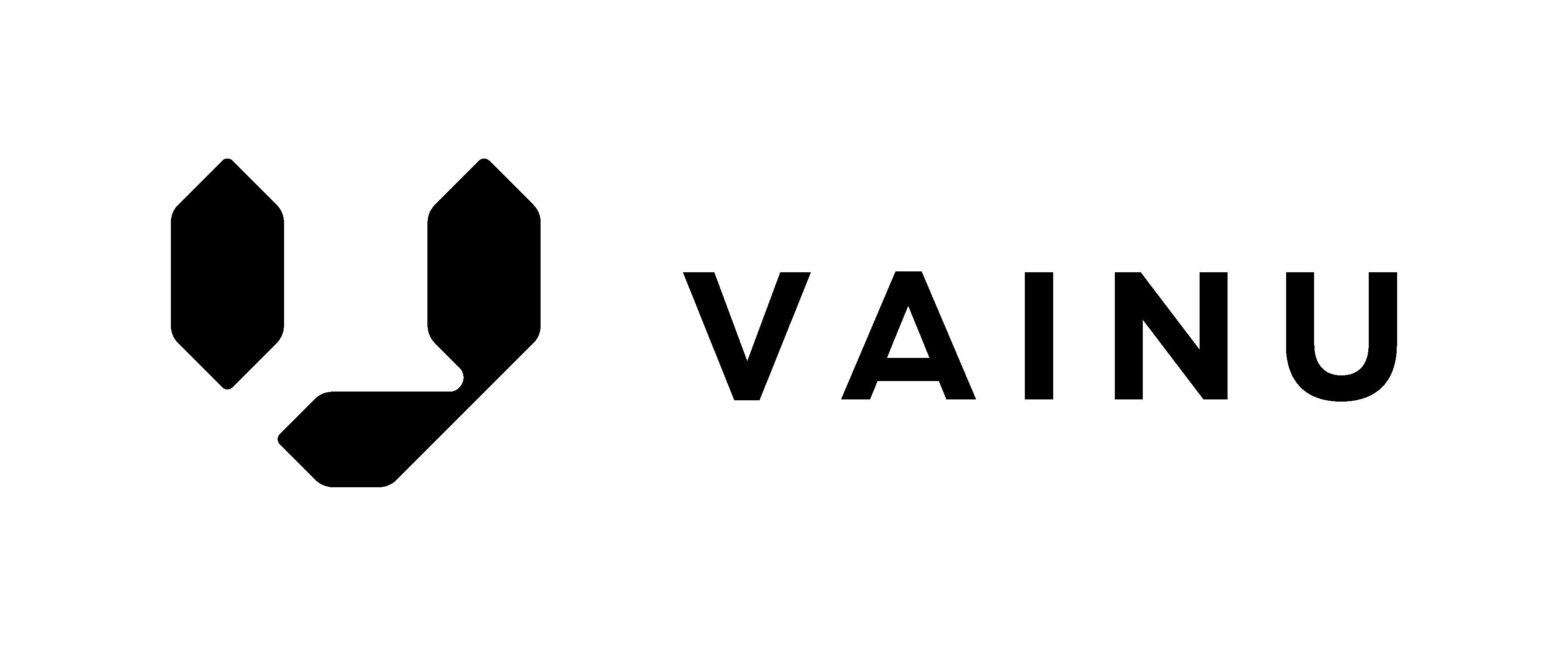 Vainu logo - new 1